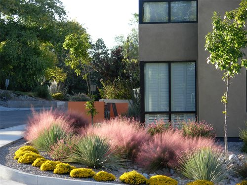 Garden and lanscape idea landscaping ideas for new mexico for New garden design ideas