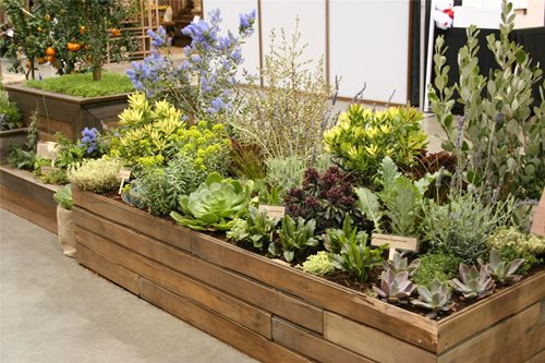 Reasons to attend the san francisco flower garden show for Edible garden designs