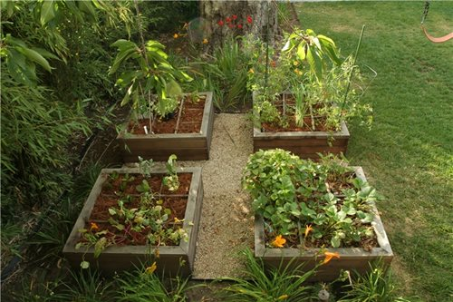 Raised bed vegetable gardening landscaping network for Raised veggie garden designs
