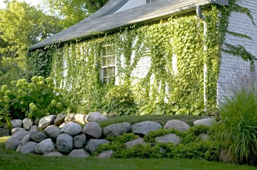 Stacked Stone Walls Landscaping