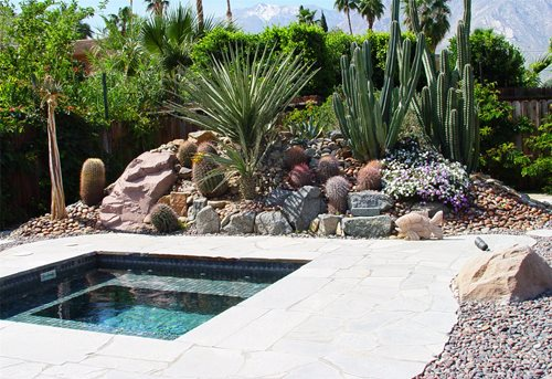 Landscaping With Succulents Ideas : Landscaping with succulents network