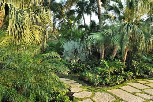Key West Pool Tropical Garden Landscaping Network