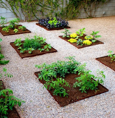 Vegetable Garden Landscape Ideas Photograph Vegetable Gard