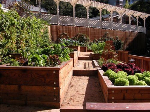 Garden landscaping design landscaping network Kitchen garden design australia