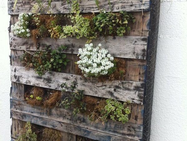 Pallet, Plants, Vertical, Garden Landscaping Network Calimesa, CA