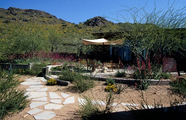 Backyard landscaping ideas in az 2017 2018 best cars for Ten eyck landscape architects
