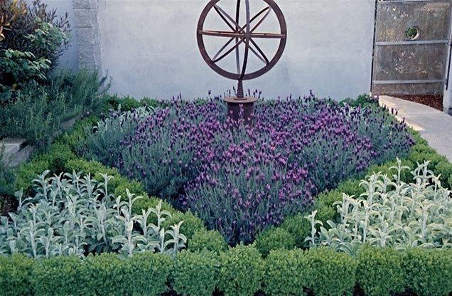 Landscaping ideas with lavender pdf for Garden design ideas lavender