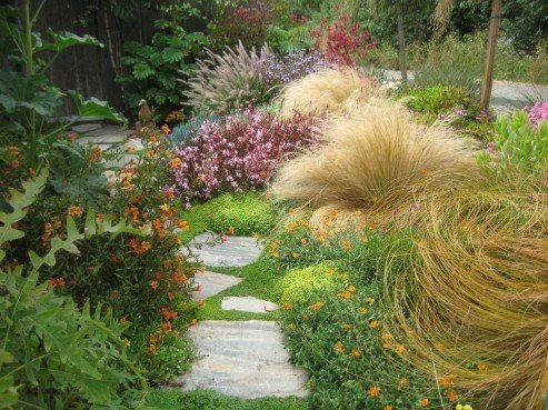 Garden design morro bay ca photo gallery for Ornamental grass garden design pictures