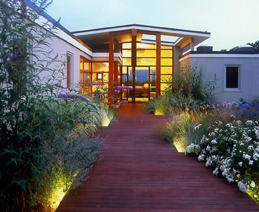 Landscaping Lighting Ideas For Front Yard : Lights shine up through plants surrounding a decklike front walkway