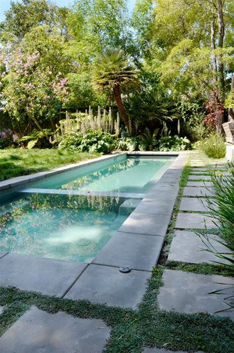 Front yard shade landscaping ideas for Modern pool landscaping