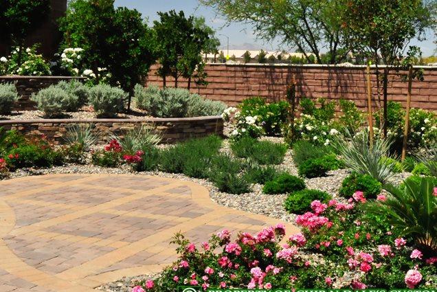 Paving las vegas nv photo gallery landscaping network for Garden design las vegas
