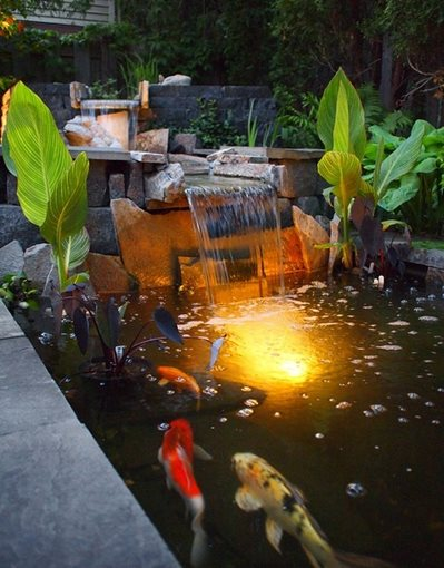 Pond and waterfall northfield mn photo gallery for Koi pond builders mn
