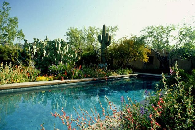 Swimming pool phoenix az photo gallery landscaping for Ten eyck landscape architects