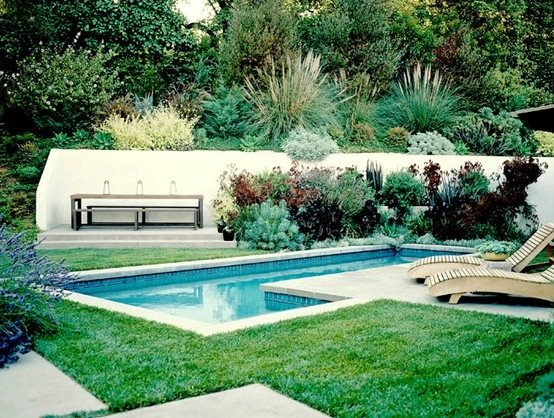 Landscaping job ideas amaryllis flower bed ideas for Swimming pool design jobs