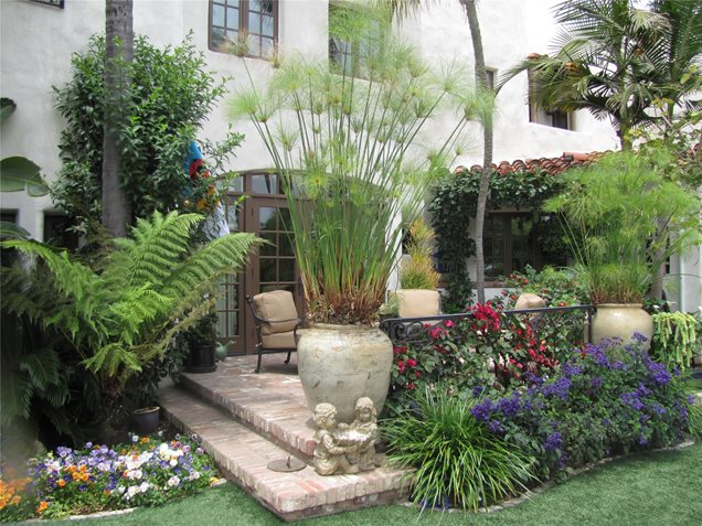 Tropical landscaping calimesa ca photo gallery for Tropical landscape