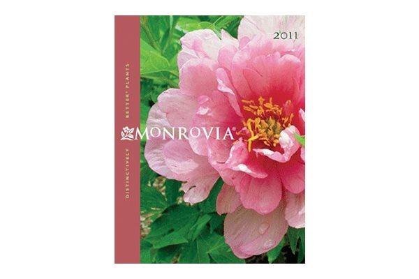 Monrovia Azusa Ca S Plant Catalog