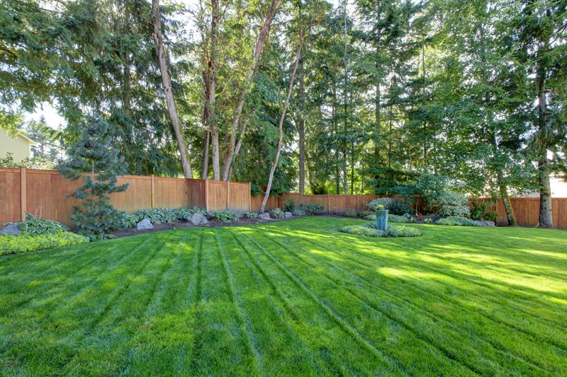 Fenced Backyard, Mowed Lawn Backyard Landscaping Landscaping Network Calimesa, CA