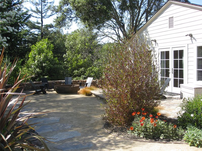 Lawnless Yard Backyard Landscaping Dig Your Garden Landscape Design San Anselmo, CA