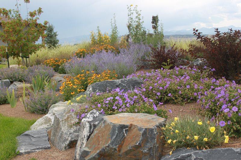 Xeriscape Boulders Boulder J&S Landscape Longmont, CO
