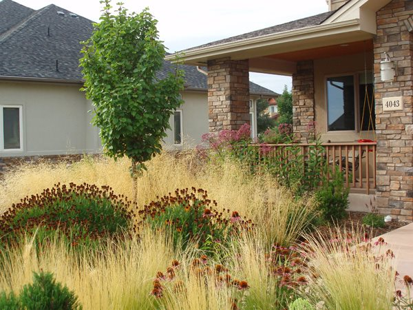 Front Yard Xeriscaping Grasses Colorado Landscaping J&S Landscape Longmont, CO