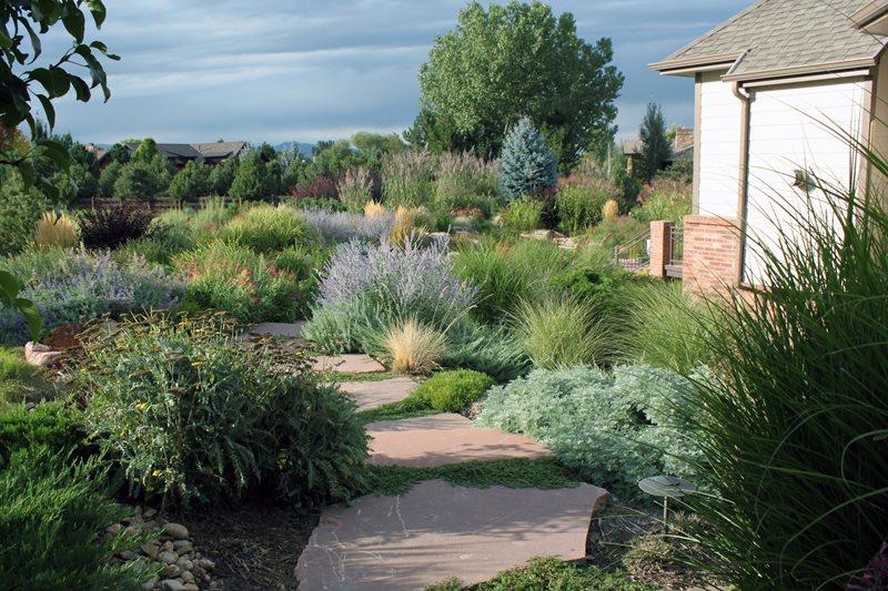 Xeriscape Garden Plants Colorado Landscaping J&S Landscape Longmont, CO