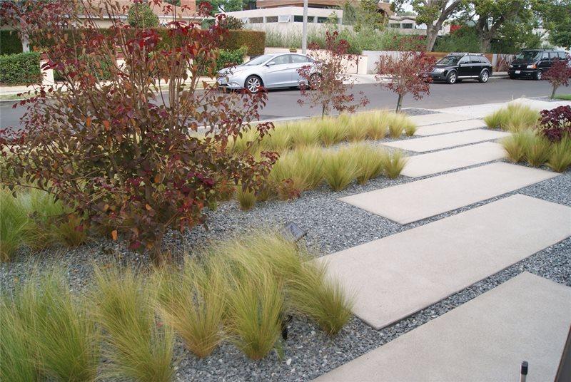 Modern Walkway Concrete Walkway Z Freedman Landscape Design Venice, CA