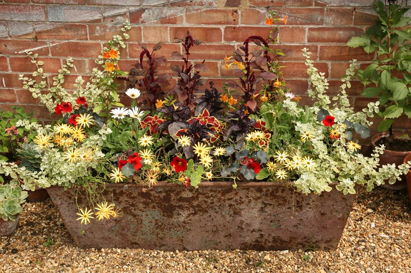 Rusty Trough Planter Container Gardens Landscaping Network Calimesa, CA