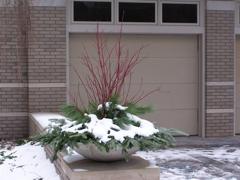 Winter Pot Container Gardens Blue Ridge Landscaping Holland, MI
