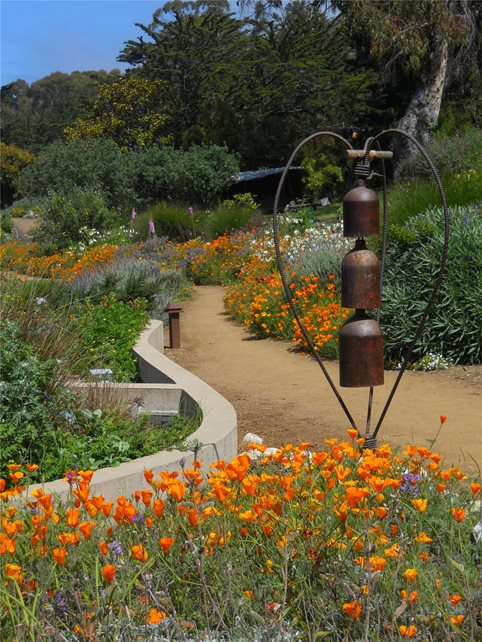 Country landscape design calimesa ca photo gallery for Find local garden designers