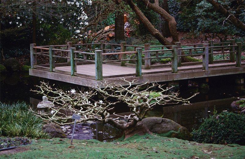 Deck Design Maureen Gilmer Morongo Valley, CA