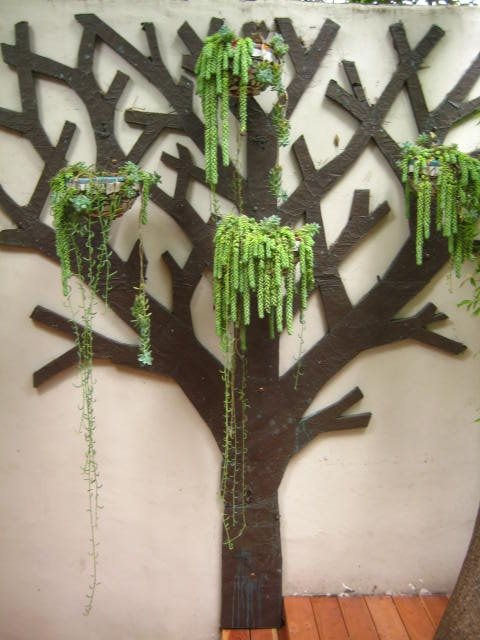 Decorative Tree Decor and Accessory Landscaping Network Calimesa, CA