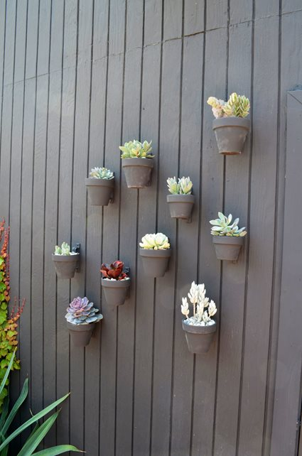 Wall, Pots, Succulents Decor and Accessory Landscaping Network Calimesa, CA
