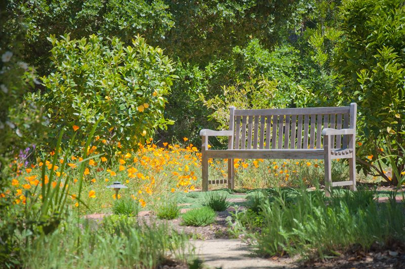 Weathered Wood Garden Bench Decor and Accessory Ecotones Landscapes Cambria, CA