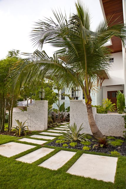 Tropical Entryway Entryways, Steps and Courtyard BORDEN Landscape Architecture Sarasota, FL