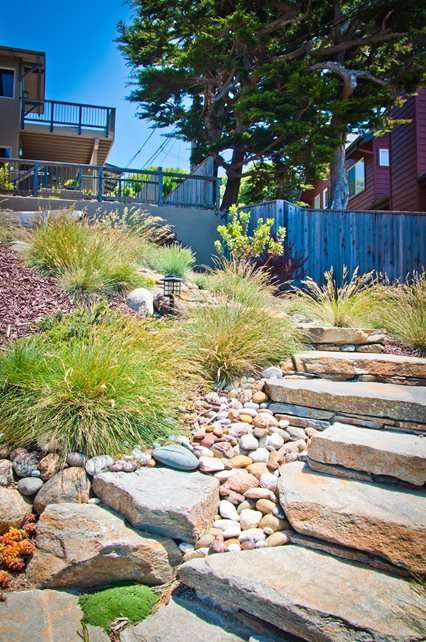 Xeriscape Planting, Grasses, Rocks Entryways, Steps and Courtyard Ecotones Landscapes Cambria, CA