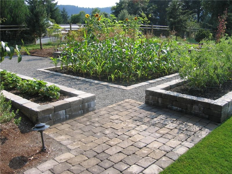 Backyard Vegetable Garden Garden Design Woody's Custom Landscaping Inc Battle Ground, WA