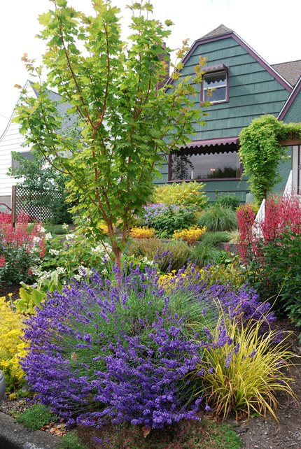 Garden design mill creek wa photo gallery for Find local garden designers