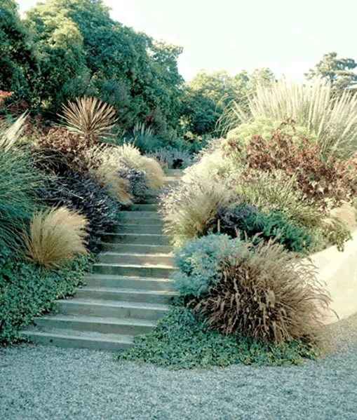 Drought Tolerant Landscaping Photos: Los Angeles, CA