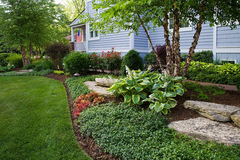 garden design landscaping. Landscape Bed  Groundcover Hosta Garden Design Grant Power Landscaping West Chicago Pictures Gallery Network