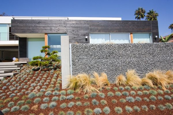 modern planting grid garden design grounded landscape architecture and planning encinitas ca