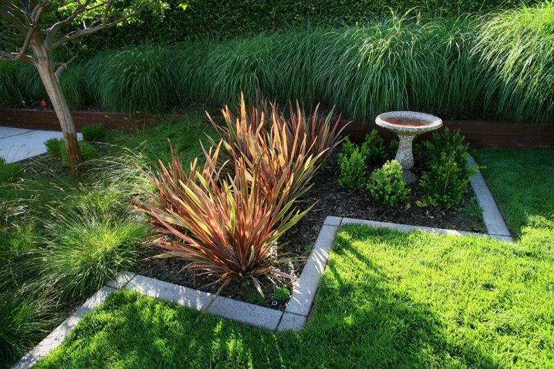 Garden design solvang ca photo gallery landscaping for Landscape design using ornamental grasses