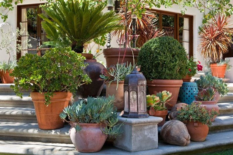 Garden design los angeles ca photo gallery for Garden design ideas with pots