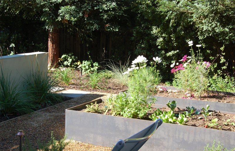 Planters Garden Design Huettl Landscape Architecture Walnut Creek, CA