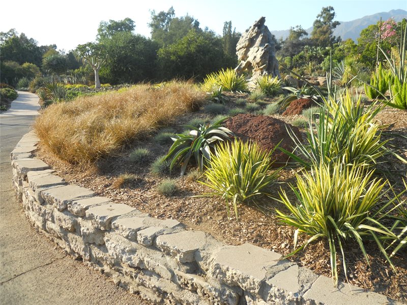 Garden design calimesa ca photo gallery landscaping for Find local garden designers