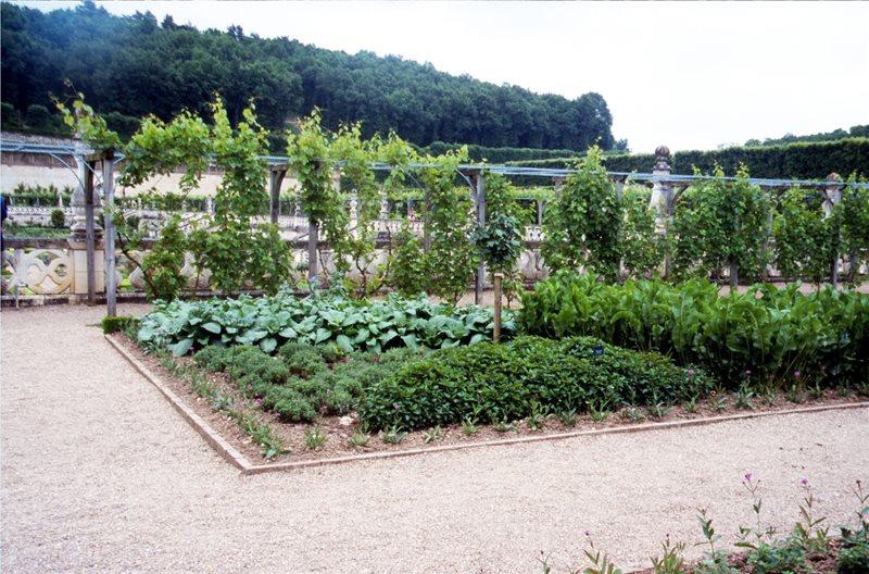 Veggie Garden Garden Design Maureen Gilmer Morongo Valley, CA
