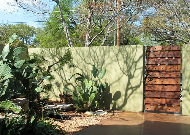 Wood Gate, Cacti, Green Gates and Fencing David Wilson Garden Design Austin, TX