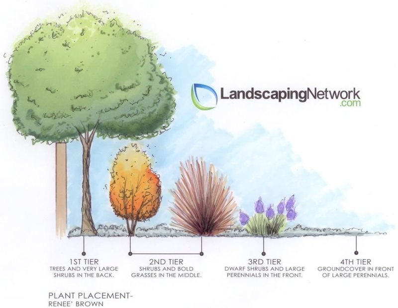 Plant Tiering Landscape Drawings Landscaping Network Calimesa, CA