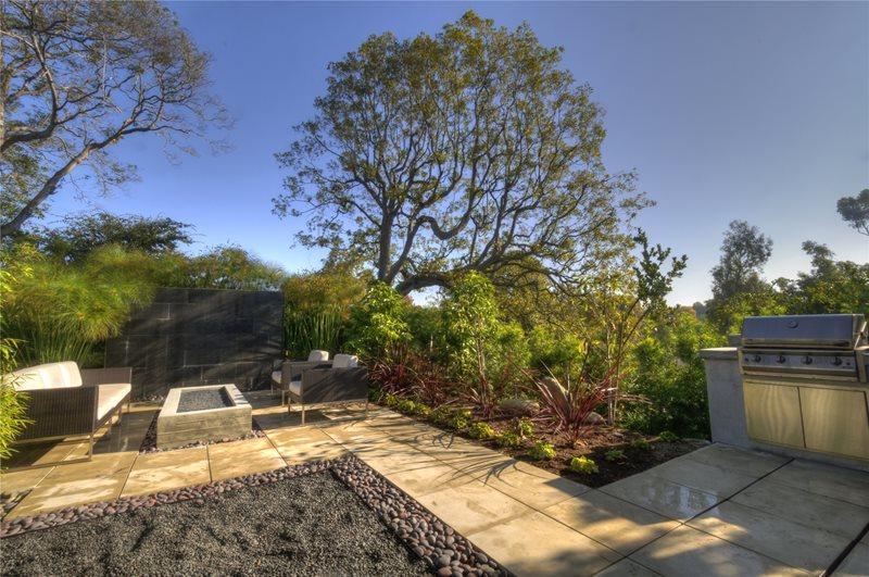 Contemporary Backyard Lawnless Landscaping Z Freedman Landscape Design Venice, CA