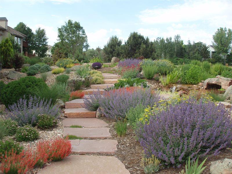 Hillside Path Lawnless Landscaping J&S Landscape Longmont, CO