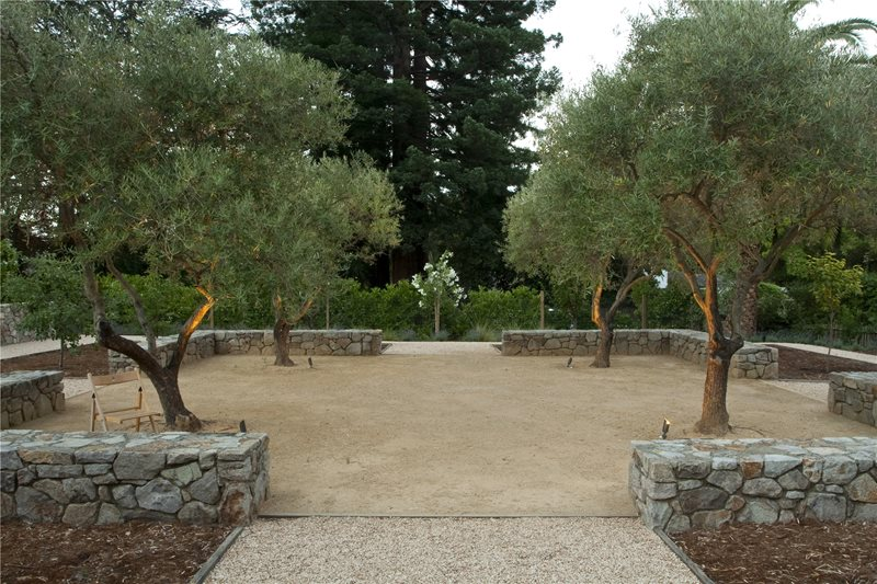Spacious Backyard Design Lawnless Landscaping Shades of Green Landscape Architecture Sausalito, CA